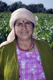 Agriculture d'opération Images libres de droits