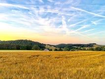 Agriculture dans le coucher du soleil images libres de droits