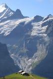 Agriculture dans les hautes montagnes de la Suisse images libres de droits
