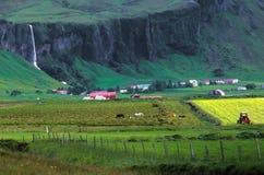 Agriculture de l'horizontal Photo libre de droits