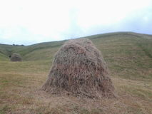 Agriculture de montagne de nature Photo stock