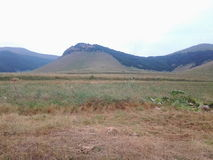 Agriculture de montagne de nature Image libre de droits