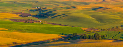 Agriculture de terre ferme Photo stock