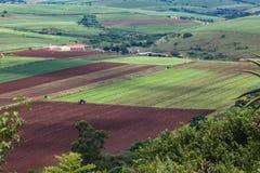 Agriculture des collectes de vallée images stock