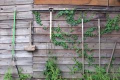 Agriculture des outils Images libres de droits
