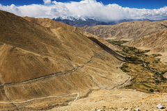 Agriculture in desert  On the way to Pangong Lake from Leh LADAKH, INDIA Stock Photography