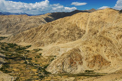 Agriculture in desert  On the way to Pangong Lake from Leh LADAKH, INDIA Stock Image