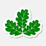 Agriculture design three oak leaves sticker Stock Images