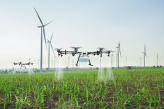 Free Agriculture Drone Fly To Spray Fertilizer On The Sugarcane Fields, Smart Farm 4.0 Concept Stock Photo - 139967590