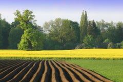 Agriculture en couleurs Images libres de droits