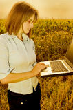 Agriculture engineer. Woman in a corn field with a laptop computer royalty free stock image