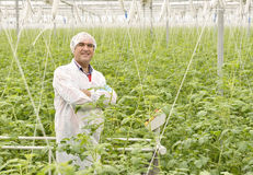 Agriculture engineer Stock Photography