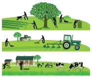 Agriculture et bétail illustration de vecteur