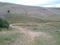 Agriculture et forêts Images libres de droits