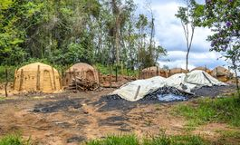 Agriculture .Eucalyptus farm in Minas Gerais , Brazil. Charcoal kilns on the eucalyptus farm in Minas Gerais , Brazil stock images