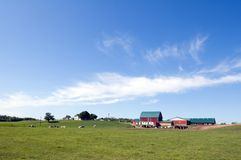 Agriculture farm Royalty Free Stock Images