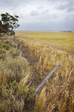 Agriculture Farm Fenceline. Looking along the fence line of a harvested agricultural farm growing wheat Royalty Free Stock Image
