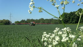 Agriculture farm tractor spraying wheat field stock video