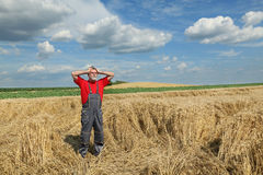 Agriculture, farmer gesture in wheat field Royalty Free Stock Photography