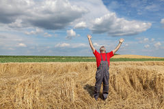 Agriculture, farmer gesture in wheat field Stock Photos