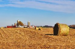 Agriculture and farming background. Stock Photography