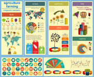 Agriculture, farming infographics Stock Image