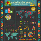 Agriculture, farming infographics Stock Images