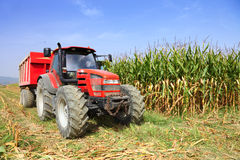 Free Agriculture, Farming Tractor Stock Photography - 21130202