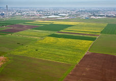Agriculture field. A agriculture field in spring Royalty Free Stock Images