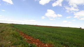Agriculture field, environment concept stock video footage