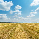 Agriculture field after harvesting and clouds Royalty Free Stock Photography