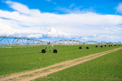 Agriculture Field Irrigation System Royalty Free Stock Photography