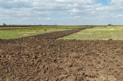 Agriculture field after plowing Royalty Free Stock Photo