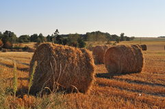Agriculture field with straw rolls Royalty Free Stock Images