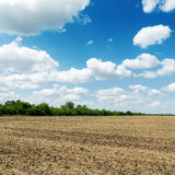 Agriculture field under cloudy blue sky Stock Image