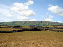 Agriculture fields. Brown and green agriculture fields width hill in the horizon Stock Image