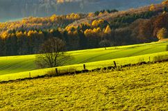 Agriculture fields in autumn, Germany. Agriculture fields in autumn on a wonderful sunny evening, Germany Royalty Free Stock Photography