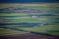 Agriculture fields. Cultivation farm agriculture fields landscape with green blocks Stock Images