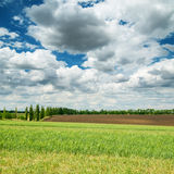 Agriculture fields and dramatic sky Royalty Free Stock Photos