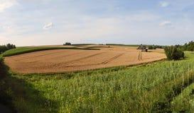 Agriculture, Fields, Grain, Corn Stock Photos