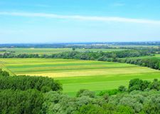 Agriculture, fields in wooded area, top view. Agriculture and cultivated lands. Rural landscape. Yellow and green fields in wooded area. Sunny day, blue sky. Top Royalty Free Stock Images