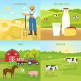 Agriculture Flat Compositions. With hay harvest organic dairy products farm green pasture  vector illustration Royalty Free Stock Image