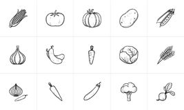 Free Agriculture Food Sketch Icon Set. Stock Photos - 107778523