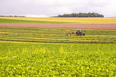 Agriculture in France. Agriculture in Champagne-Ardenne (France). Tractor on a field at summer Royalty Free Stock Photography