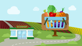 Agriculture fruit vegetable organic ecoshop shop market flat Royalty Free Stock Photos