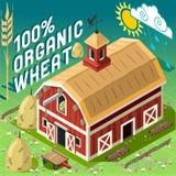 Agriculture gratuite de chaîne de poulailler isométrique Image libre de droits