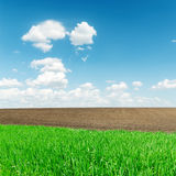Agriculture green and black fields and clouds Stock Photo