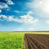 Agriculture green and black fields and sunset in blue sky with c. Louds Stock Photos