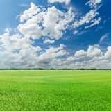 green field and blue sky with low clouds Stock Photo