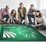 Agriculture Harvest Agronomy Cultivation Production Concept. People Discuss Agriculture Harvest Agronomy Cultivation Production royalty free stock images